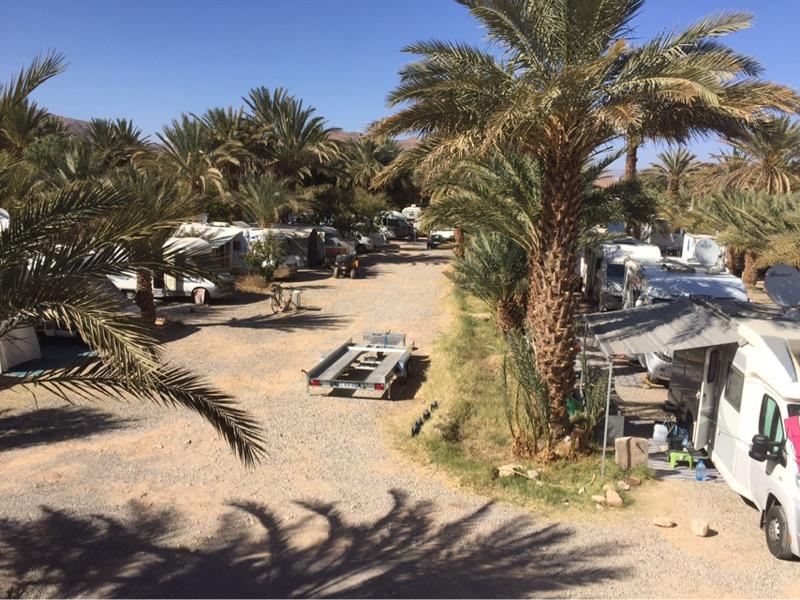 Camping Palmier