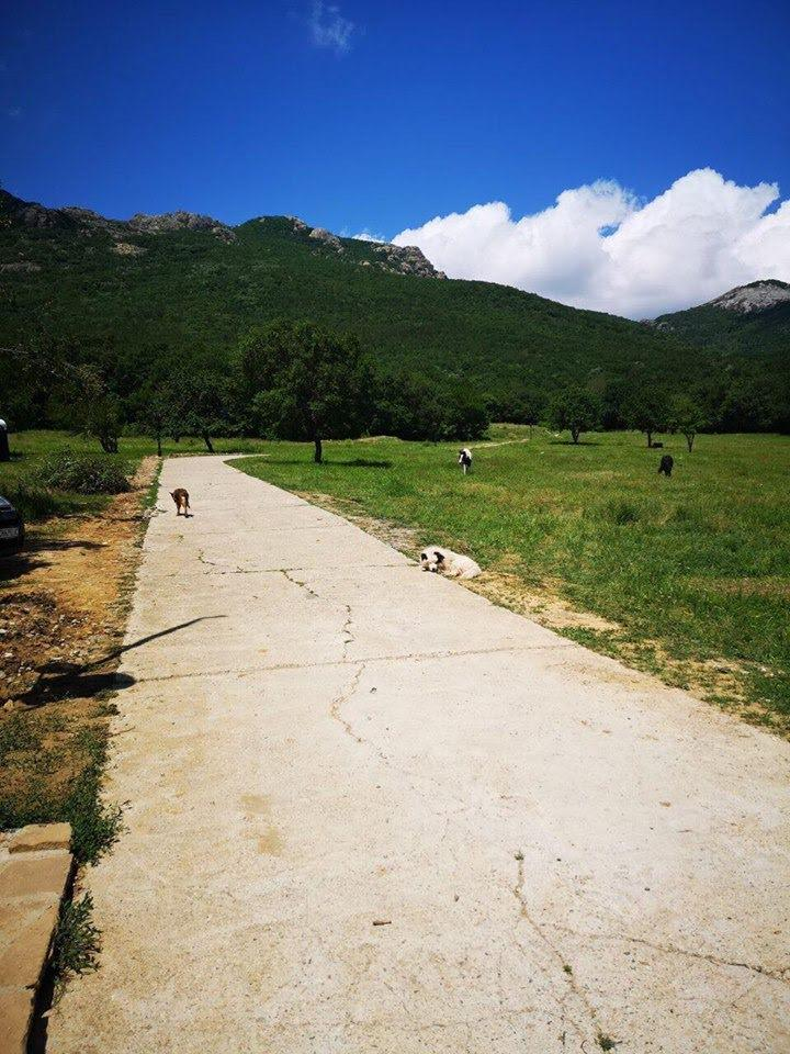 Camping Oasis Sliven